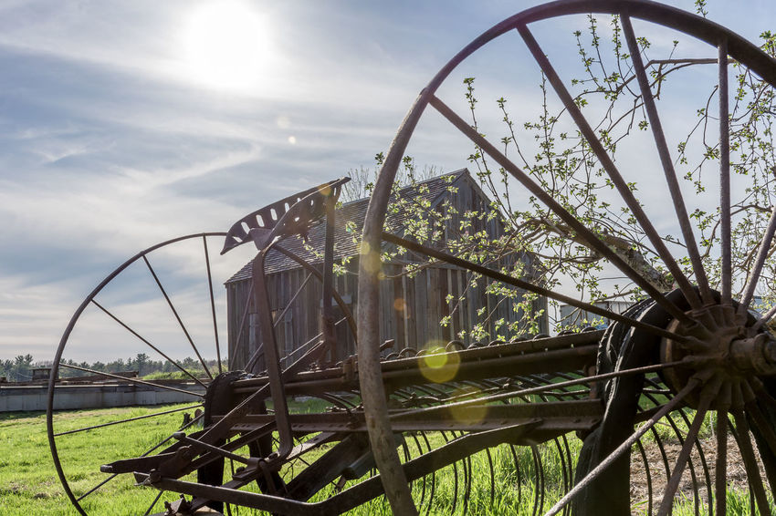 Farm Rural Scene Ruralphotography Rurallife  Tranquility Scenics Barntastic  EyeEmNewHere Farm Life No People Outdoors Day Sunlight Barn Antique Antique Farm Machinery The Good Old Days Historic History Sky Grass