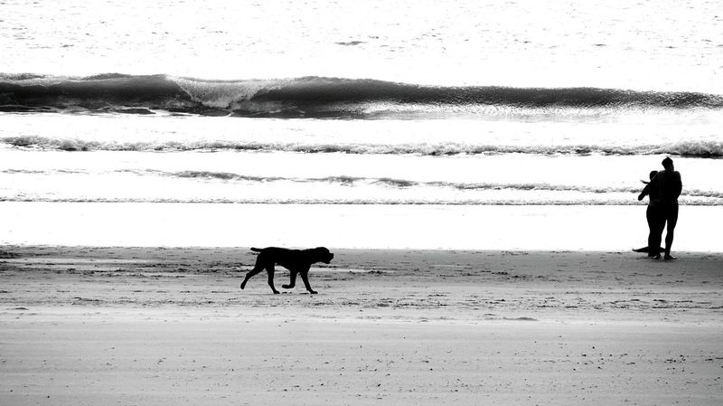 walking at the beach.. taking photos.. Just Taking Pictures Blackandwhitephotography My Monochrome World Blackandwhite Photography Monocrome Design Black And White Monchrome Monochrome _ Collection Monochrome