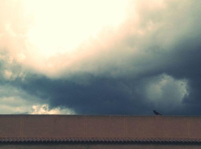 Outdoors Day Cloud - Sky Sky Storm Cloud Nature Scenics