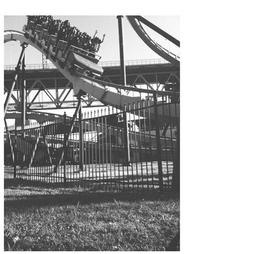 Laronde Cobra Rollercoaster Ichickenedout ihaterollercoasters