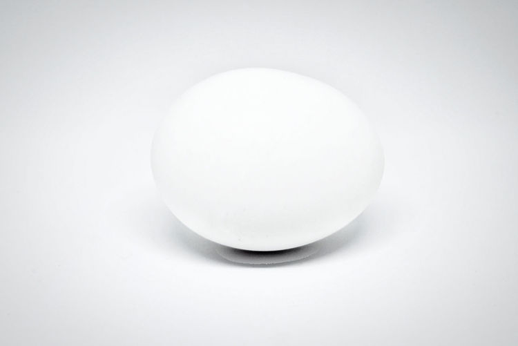 Close-up of egg against white background
