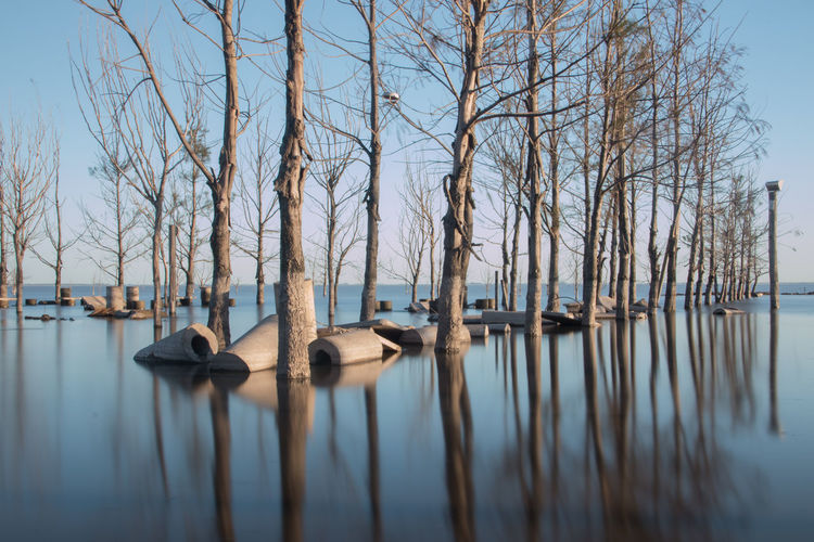 Panoramic view of bare trees in lake against sky water reflections