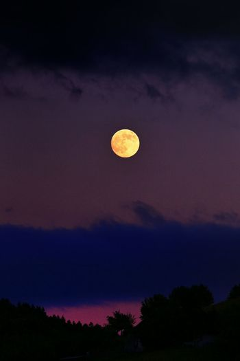 a yellow Moon in front of a Purple Sky ! Absolutely Incredible