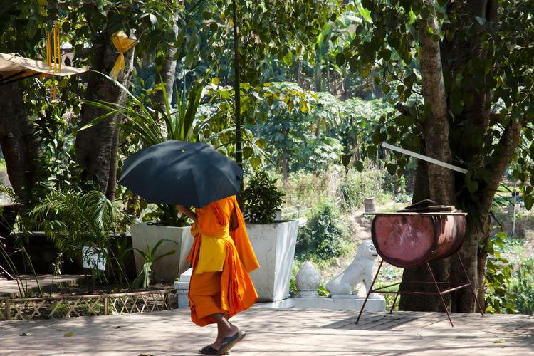 Monk holding umbrella while walking on road