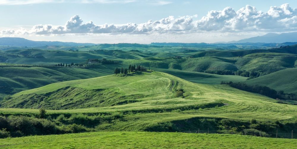 EyeEmNewHere Tuscany Tuscany Countryside Agriculture Beauty In Nature Cloud - Sky Clouds And Sky Day Field Grass Green Color Growth Idyllic Italy Landscape Mountain Nature No People Outdoors Rural Scene Scenics Sky Tranquil Scene Tranquility Tree EyeEmNewHere