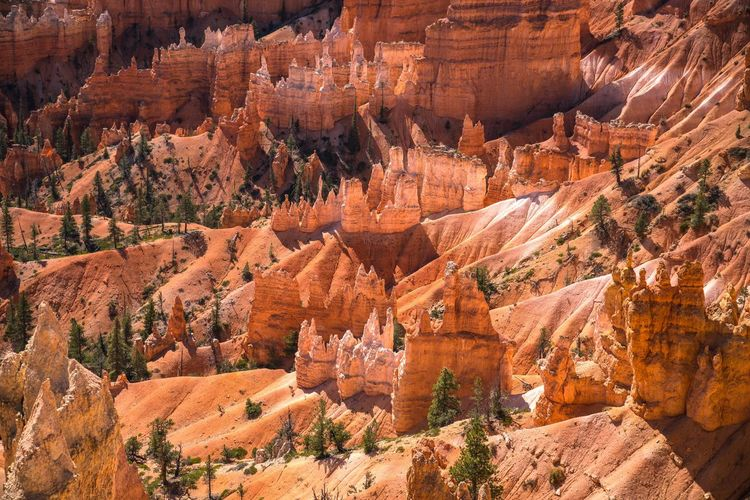 Just Another Planet. Travel Travel Destinations Nature Rock - Object Geology Rock Formation Canyon Scenics Beauty In Nature Rock Hoodoo Outdoors Bryce Canyon Bryce Canyon National Park Bryce Is Nice USAtrip USA Utah Great Outdoors Hoodoos Otherworldly Nature Roadtrip Orange Colors Orange Color
