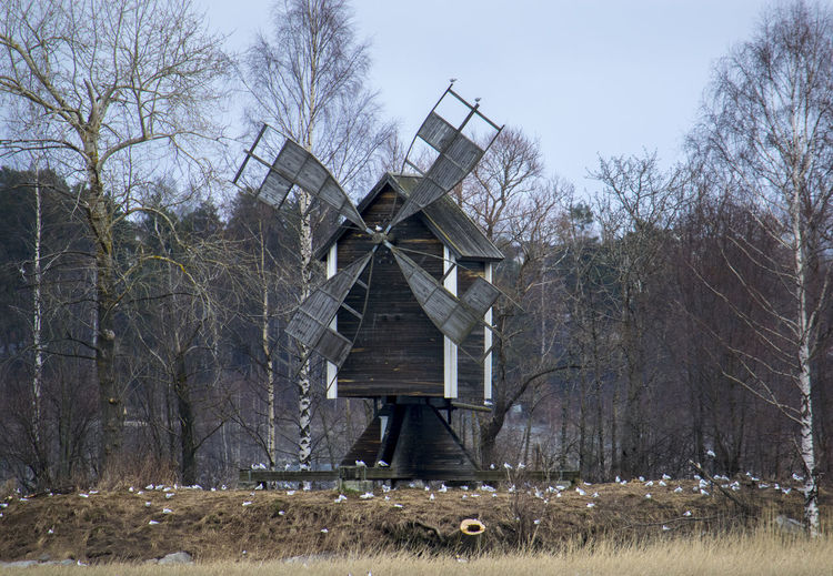 Old windmill Birds Built Structure Grass Landscape No People Non-urban Scene Old Old Buildings Outdoors Sky Tranquility Tree Windmill Wood - Material