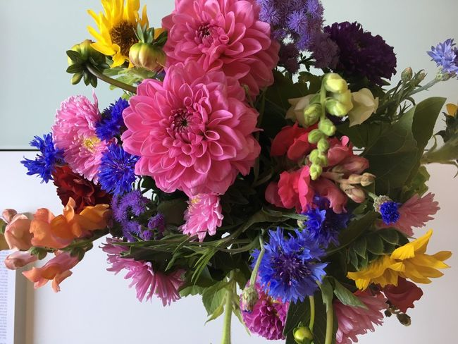 Late Summer Late Summer Colours Autumn Autumn Colors Colorful Bunch Of Flowers Bouquet Freshness Beauty In Nature Flower Arrangement Weekend Activities