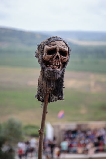 Close-up of human skull on wooden post against sky