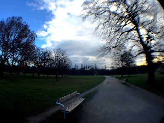 loneliness parkbank park bench trees einsamkeit alleine alone