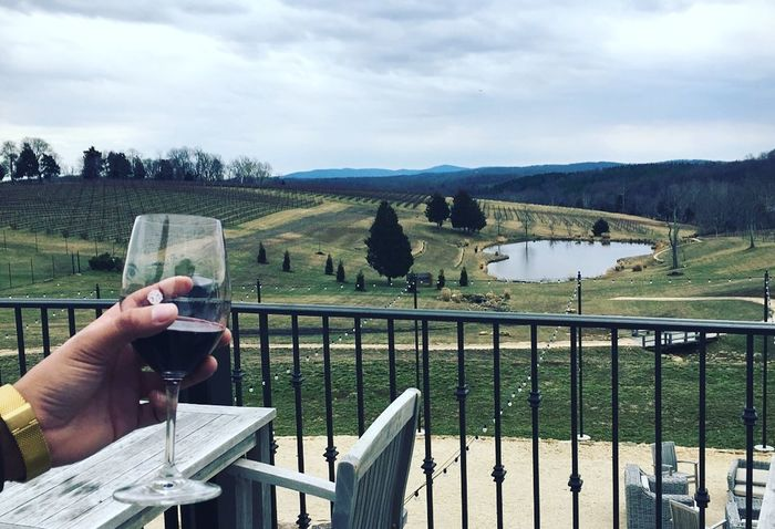 Landscape Wine Day Countryside Vinyard Wine Not