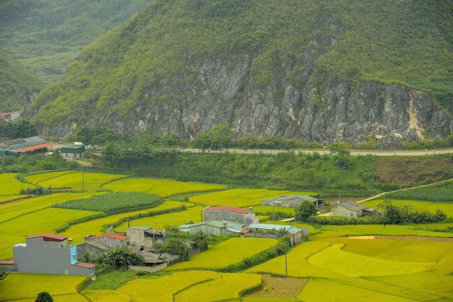 Beautiful View of Quan Ba town in Ha Giang district during cloudy and foggy morning. Witness of the twin mountain . The road is the gateway to the Dong Van Karst Plateau Geopark Quản Bạ World Heritage Site By UNESCO Unesco Landscape Geopark Town Paddy Fields Environment Scenics - Nature Land Green Color Architecture Field Nature Transportation Day Agriculture Rural Scene Mountain Plant Beauty In Nature Outdoors No People Tranquility Mode Of Transportation Tranquil Scene