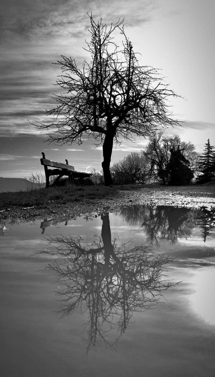 SILHOUETTE BARE TREE IN LAKE AGAINST SKY
