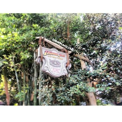 Indiana Jones! :).I'll post all the pictures from today!! :) Disneyland Disneyland_cali @Disneyland Indianajones Adventureland Earlyinthemorning