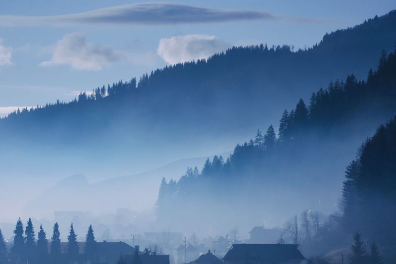 Bucovina Landscape Romania Nature Tree Beauty In Nature Mountain Tranquility No People Scenics Sky Outdoors Mountain Range Fog Cold Temperature Day An Eye For Travel