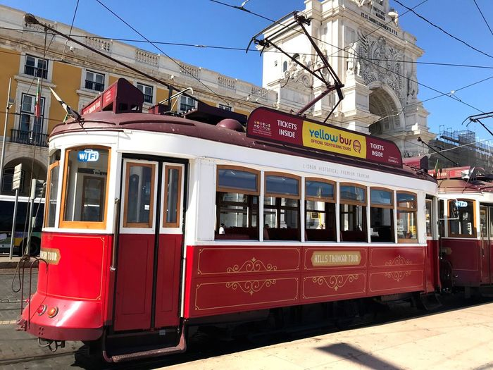 Lisbonne Historic Portugal Imperfection Is Beauty Tramway EyeEm Best Shots Landscape_Collection Portugal_lovers ForTheLoveOfPhotography Landscape_photography Flowering Plant Public Transportation Mode Of Transportation Rail Transportation Transportation Architecture Train Building Exterior Cable Car Train - Vehicle Railroad Track Track Built Structure City Text Nature Sunlight Day Land Vehicle Window Communication