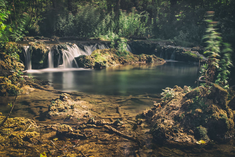 Color Palette Water Waterfall Forest Scenics Long Exposure Beauty In Nature Tranquil Scene Tree Nature Tranquility Idyllic River The Magic Mission Growth Flowing Water Day Outdoors Check This Out Taking PhotosCalm Relaxing Taking Pictures Eye4photography  Getting Inspired
