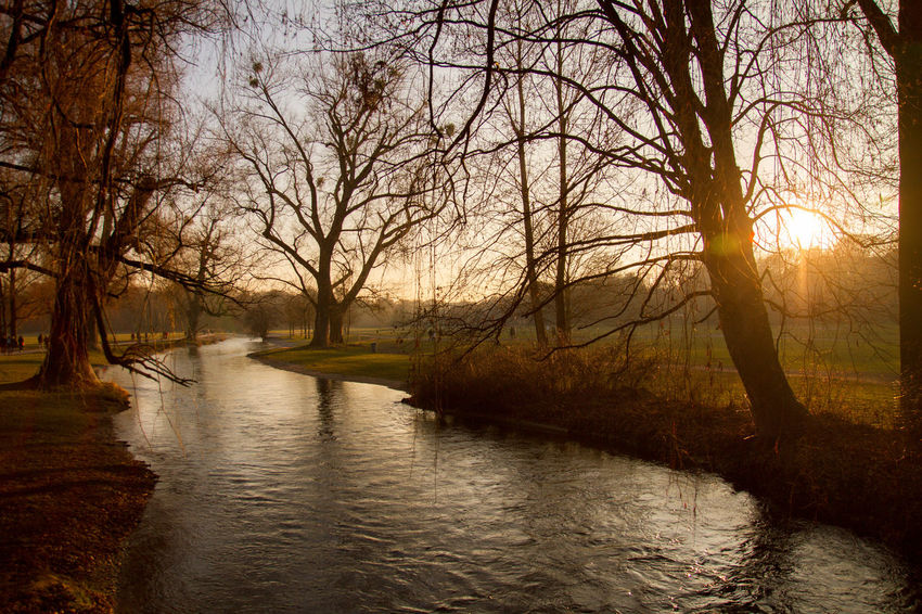 Beauty In Nature Calm Day Eisbach Englischer Garten Harmonic Lake Munich München,Germany Outdoors Park Peace And Quiet Peaceful Reflection Scenics Sundown Sunlight Sunset Tranquility Tree Water Winter Wintertime The Great Outdoors - 2017 EyeEm Awards