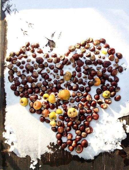Heart Heart Shape Valentine's Day  Love Snow Winter Cold Temperature Cold Large Group Of Objects High Angle View Chestnut Close-up Day No People Snow Melting New Beginning Thawing Awakening Apples Fruit Nature Season  New Love