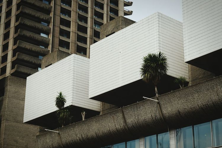 Architecture Geometry Barbican Barbican Centre Brutalism London Pattern Residential District Built Structure Squares White Palm Trees Building Three Of A Kind Urban Geometry The Architect - 2016 EyeEm Awards EyeEm LOST IN London Postcode Postcards