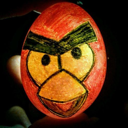 Angry bird Egg Shells Shell Painting