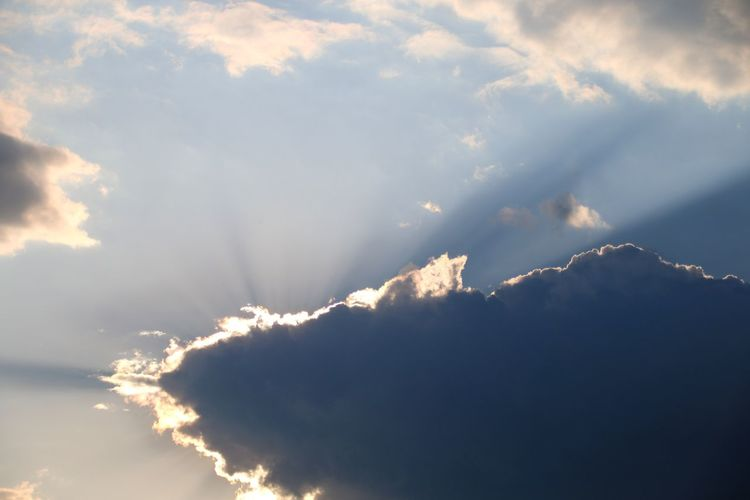 The fish cloud Cloud Clouds And Sky Fish Cloud Thunderstorm Sky Sky Only Heaven Cumulus Cloud Cloudscape Meteorology