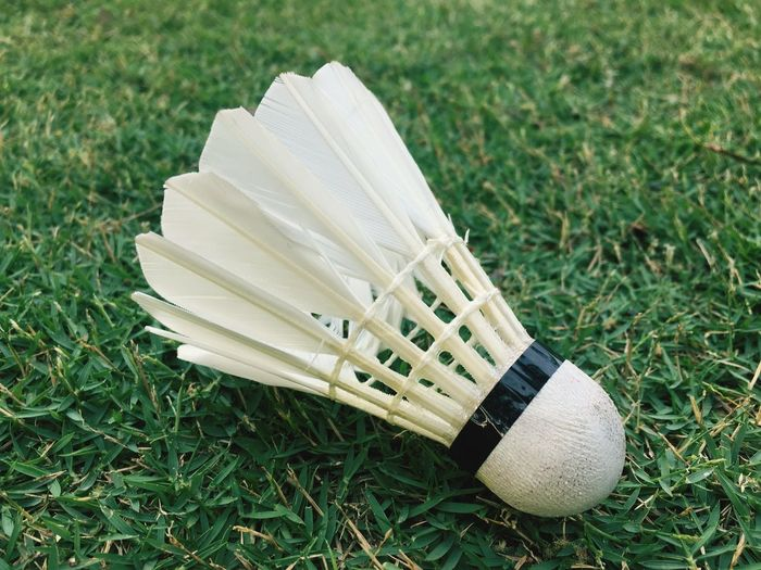 High angle view of shuttlecock on grassy field