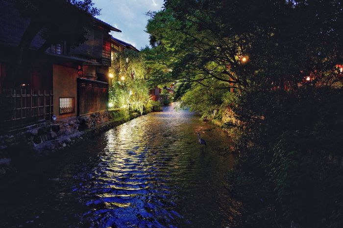 On The Bridge 巽橋 Tatsumi-bashi, Gion Shirakawa River Kyoto, Japan Lowlightphotography Water Reflections Waves Pallet Illuminated No People Outdoors Tree Night Lights Night Photography Finding a heron de Good Evening / 28mm F/1.7 Kyoto, Rambling with a Leica Q Walking Around The City  京都市  Travel Destinations 祇園白川