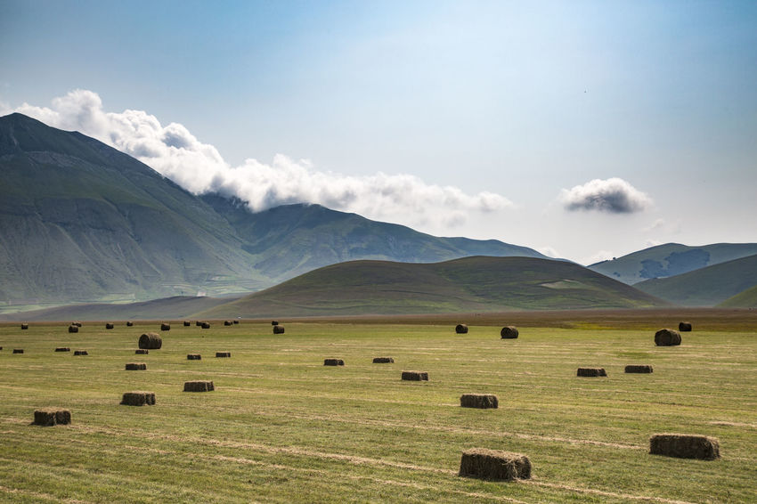 Campagna Castelluccio Countryside Fieno Hay Landscapes With WhiteWall Perspectives On Nature