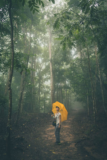 Woman with umbrella standing at forest
