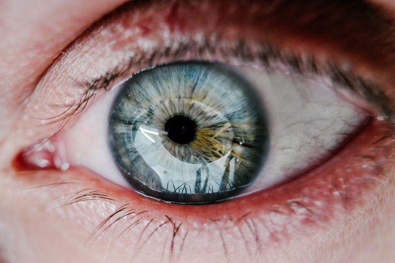 Stare Blue Eyes Olhos Ojo Portrait Eyes Are Soul Reflection EyeEm Best Shots Eye Close-up Human Body Part Human Eye Eyelash Eyesight Sensory Perception One Person Body Part Extreme Close-up Eyeball Iris - Eye Reflection Macro Real People Full Frame Unrecognizable Person Looking Eyebrow