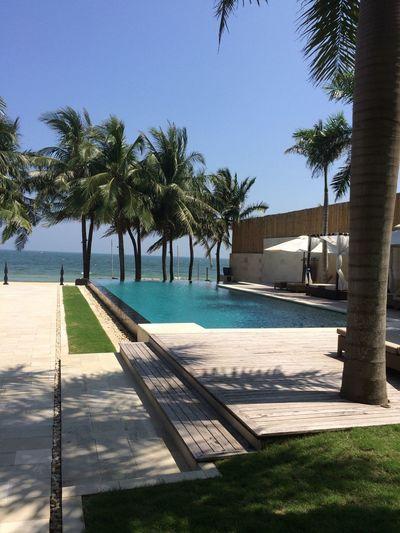 Outdoors Plant Tree Holiday Villa Palm Tree Vacations Chair Beach Vietnam