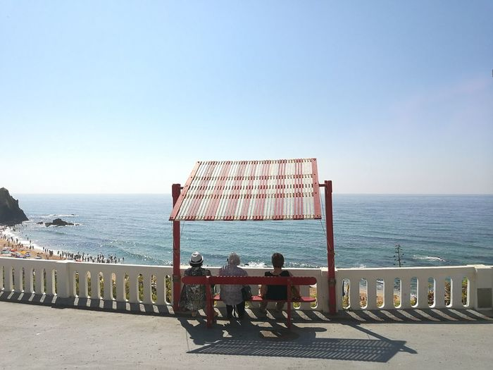 Rear View Of People Sitting On Bench By Sea Against Clear Sky