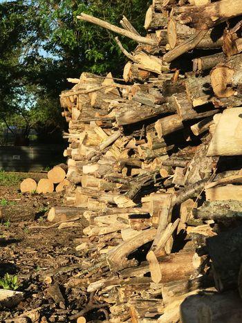 Firewood Logs Logpile Farm Life Farm Chop Wood