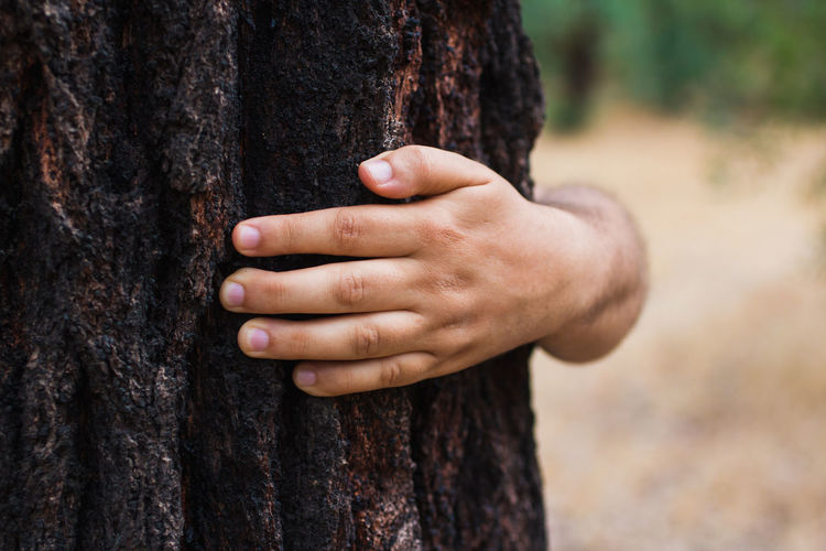 Cropped hand of man embracing tree