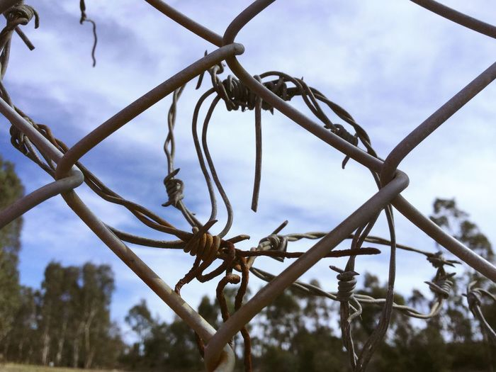 Wire Barbed Wire Fence Let Me Out Rust Rusty Twisted Metal Taking Pictures Simple Photography Enjoying Life Hanging Out Showcase April