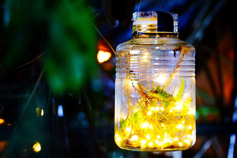 Close-up of illuminated jar at night
