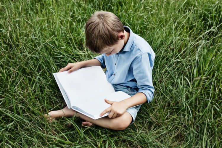 Boy reading book on field