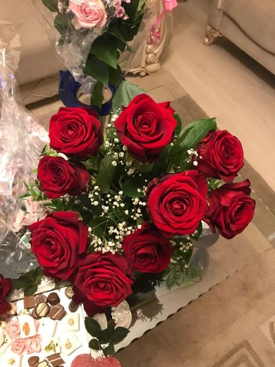 Rose - Flower Rose🌹 ❤️