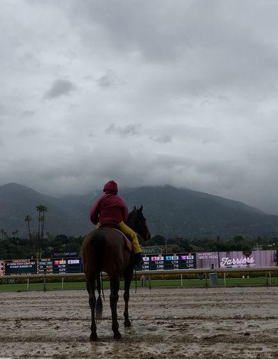 California Love The Great Outdoors Horses_of_instagram Horses Overcast But Beautiful Original Experiences Sky And Clouds Tranquility Feel The Journey, Horse And Rider As One. Rainy Days Muddy Track Fine Art Photography