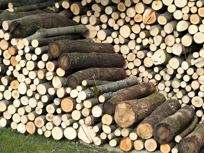 Stored stove wood for burning Large Group Of Objects Timber Stack Tree Log Deforestation Firewood Wood - Material Forest Lumber Industry Wood Nature No People Abundance Fuel And Power Generation Environmental Issues Plant Outdoors Backgrounds Day Excess Heating