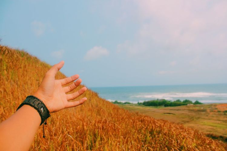 All I can hold while you're away is just the distance that sets us apart. Savannah Day Horizon Gesturing Finger Human Limb Human Arm Outdoors Scenics - Nature Grass Water Landscape Sea Nature Plant Land Sky Hand Human Hand Human Body Part