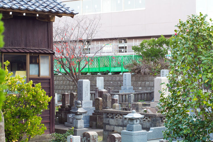 Private shrine in Tokyo Architecture Art And Craft Building Exterior Built Structure Culture Exterior Japan Japanese  Japanese Temple Religion Sculpture Shrine Spirituality Statue Tomb Traditional Tree Urban