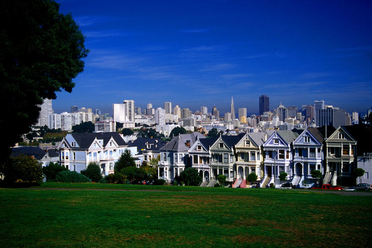 Painted Ladies, San Francisco, California Painted Ladies San Francisco Painted Ladies Tourist Attraction  Color California Dreaming CaliforniaTravel Destinations Cali Downtown City Cityscapes Cityscape City Skyline Scenicphotography Travel Photography Tourist Destination San Francisco San Francisco, California Houses House Buildings Architecture Scenic Scenic View Scenic Landscapes Scenic Photograghy