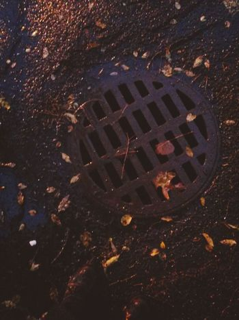 Rainy Days Storm Drain Covers Streetphotography Taking Pictures