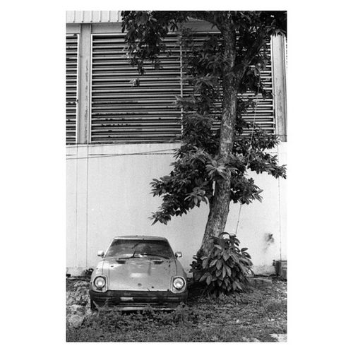 Analog Classics | A 1969 to 1975 Datsun 240Z that seemed to be parked long time here | Same era LeicaM4 and modern 35mm summarit | Ilford HP5 blackandwhite film | nissan fairladyZ 280z japaneseclassiccars leica