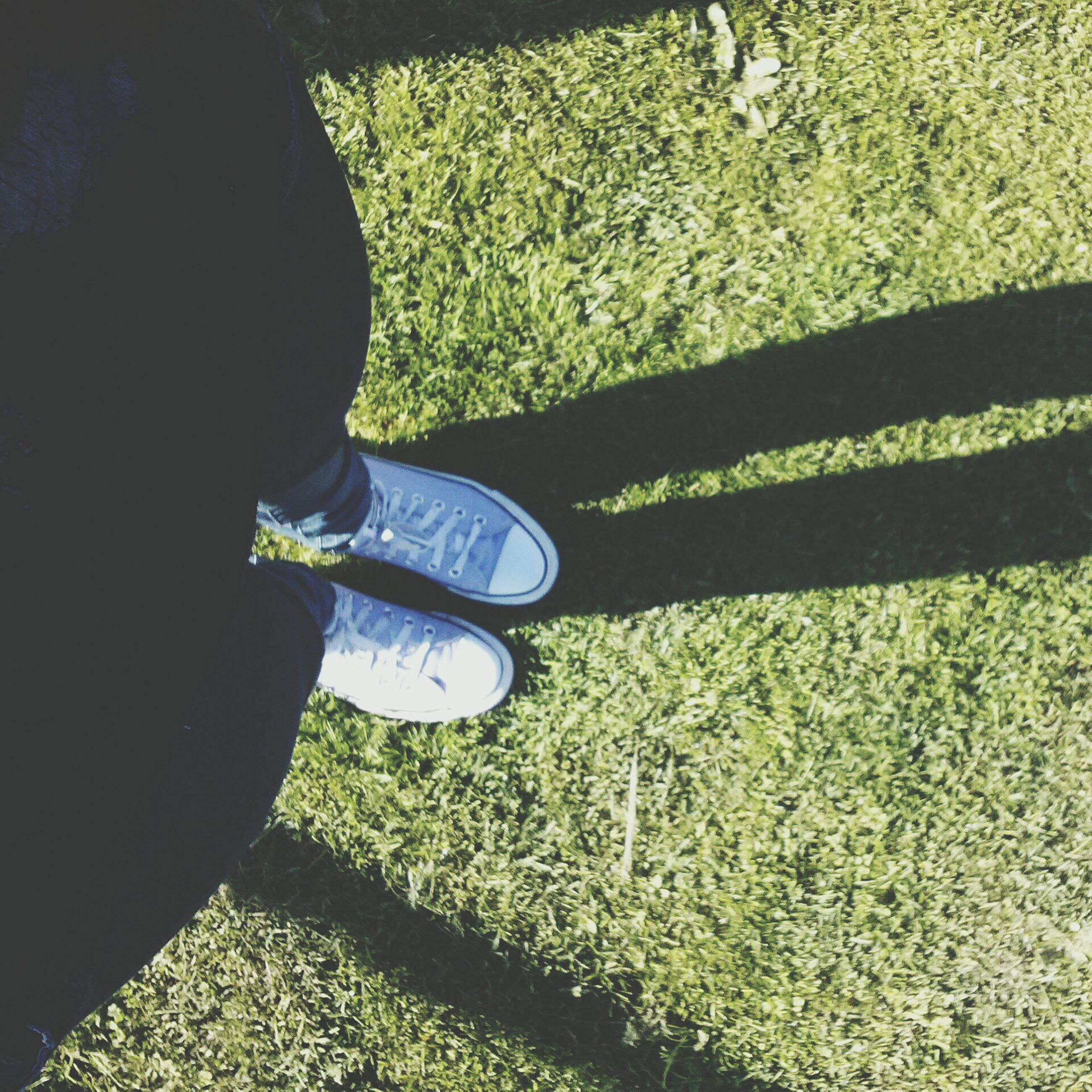 grass, lifestyles, low section, leisure activity, person, high angle view, shoe, men, field, standing, casual clothing, grassy, green color, sunlight, shadow, footwear, day, outdoors