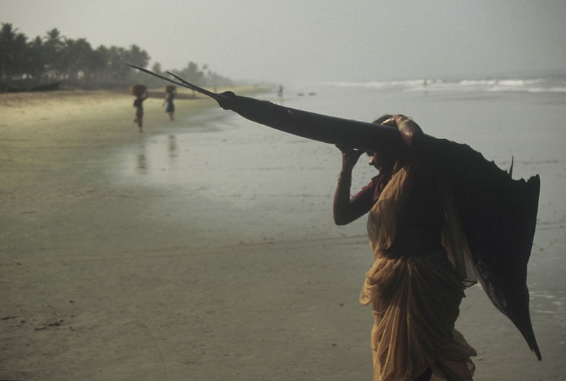 Beach Life Fishing Indian Women Ocean Indien Real People Woman Working India EyeEm Gallery Landscape With Whitewall 35 Mm Adventure Club