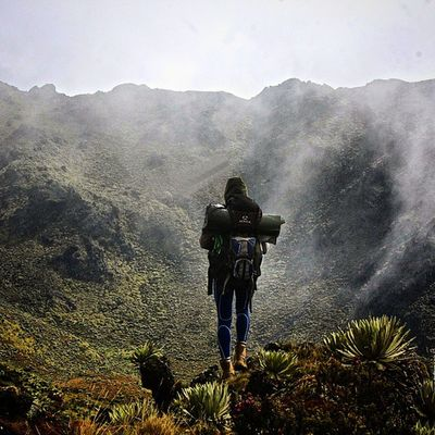Un montañista camina entre frailejones y neblina, por los caminos del paramo del Batallon y de la Negra en el estado Tachira  en Venezuela Venezuelatravel Venezuelaes Gotravelfree Gf_venezuela Gf_colombia IG_GRANCARACAS IgersVenezuela Insta_ve Instapro_ve IG_Venezuela InstaLoveVenezuela Instafoto_ve Instaland_ve Destinomaschevere Tequierovenezuela Thisisvenezuela Icu_venezuela Ig_lara Igworldclub Ig_tachira IG_Panama Instaland_ve Thisisvenezuela icu_venezuela ig_lara igworldclub ig_tachira ig_panamá ig_merida instavenezuela elnacionalweb venezuelapaisajes instanature gf_daily venezuelacaptures