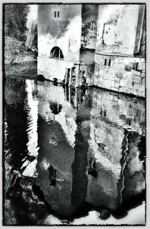 Reflection Blackandwhite Black And White